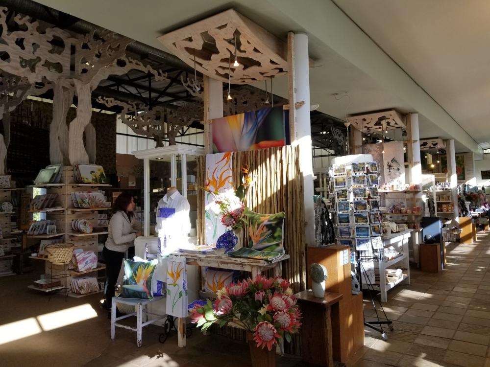 Kirstenbosch Botanical Garden_Cape Town (79)